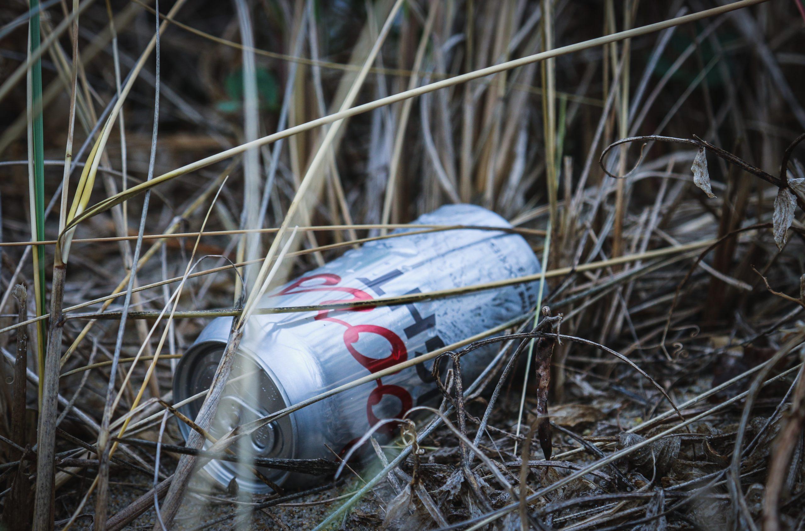Müll im Gras, Foto Von Brian Yurasits auf Unsplash